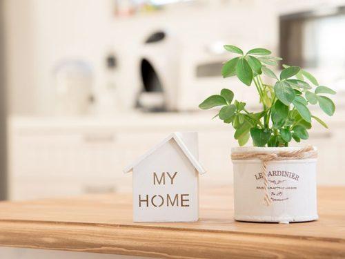 机の上に置かれた観葉植物と家の模型